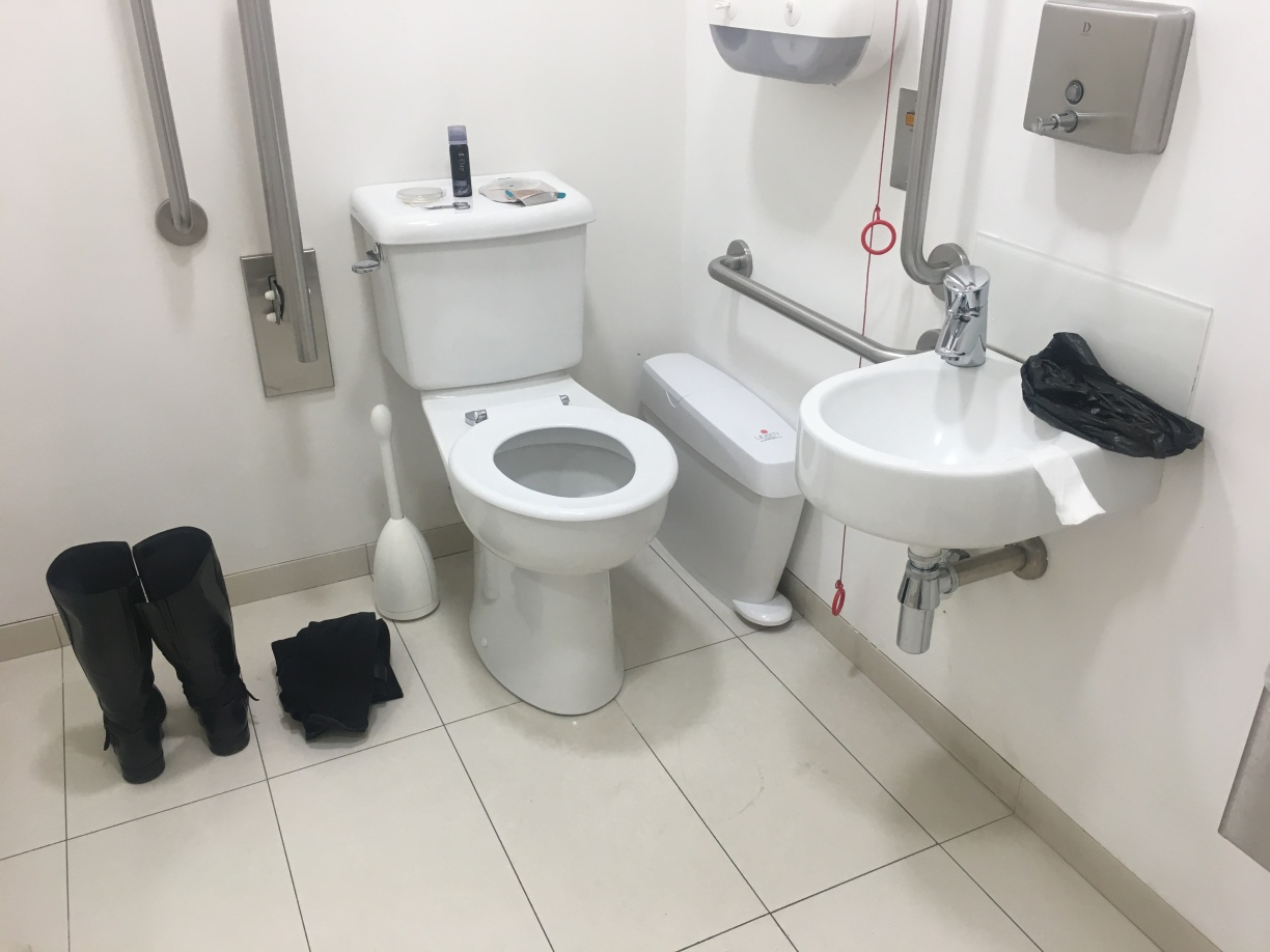 Bag change in an accessible toilet